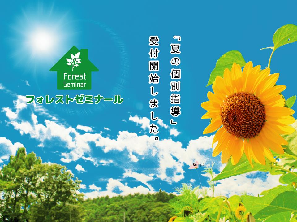 フォレストゼミナール「夏の個別指導」受付開始!